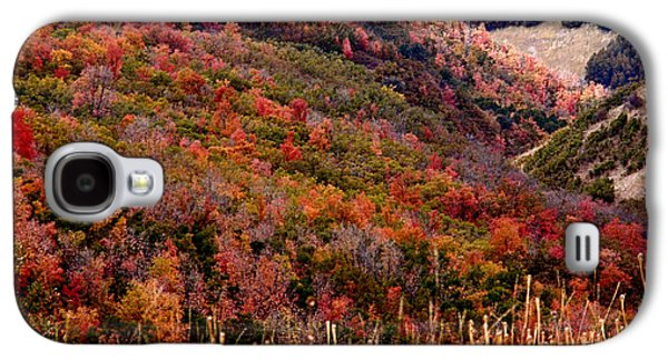 Autumn Galaxy S4 Case by Rona Black