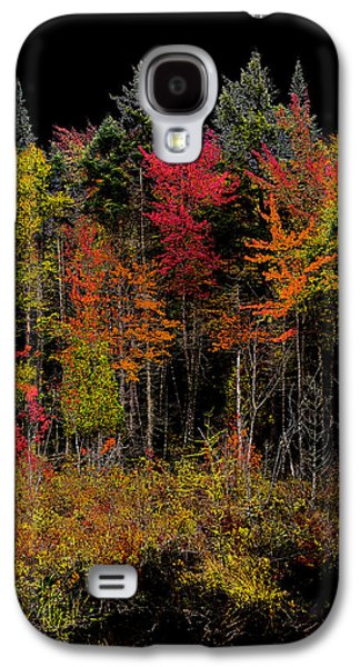 Surreal Landscape Galaxy S4 Cases - Autumn Splendor in the Adirondacks Galaxy S4 Case by David Patterson