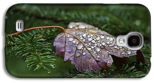 Autumn Leaf On Water Galaxy S4 Cases - Autumn Splendor Galaxy S4 Case by TB Sojka