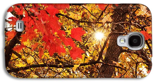 Sunny Mixed Media Galaxy S4 Cases - Autumn Sunrise Painterly Galaxy S4 Case by Andee Design