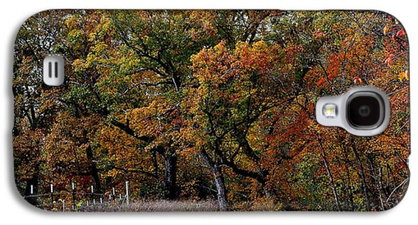 Green Galaxy S4 Cases - Autumn Trail 2 Galaxy S4 Case by Deena Stoddard