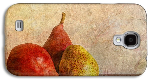 Harvest Art Galaxy S4 Cases - Autumn Trio  II Galaxy S4 Case by Heidi Smith