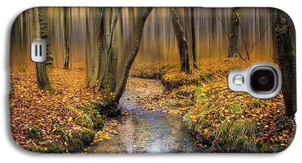 Woodlands Scene Galaxy S4 Cases - Autumn Woodland Galaxy S4 Case by Ian Hufton