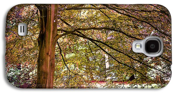 Garden Scene Photographs Galaxy S4 Cases - Autumnal Colors in the Summer Time. De Haar Castle Park Galaxy S4 Case by Jenny Rainbow