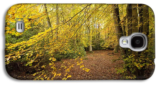Woodlands Scene Galaxy S4 Cases - Autumnal Woodland II Galaxy S4 Case by Natalie Kinnear