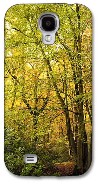 Woodlands Scene Galaxy S4 Cases - Autumnal Woodland III Galaxy S4 Case by Natalie Kinnear