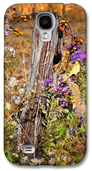Close Focus Nature Scene Galaxy S4 Cases - Autumns Flowers Galaxy S4 Case by Thomas Schoeller