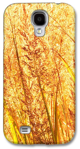 Fall Grass Galaxy S4 Cases - Autumns Passion Galaxy S4 Case by Bob Orsillo