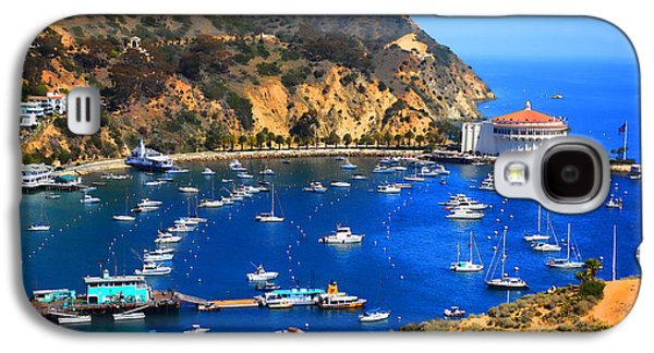 Wrigley Galaxy S4 Cases - Avalon Harbor Galaxy S4 Case by Cheryl Young