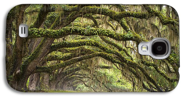 Carolina Galaxy S4 Cases - Avenue of Oaks - Charleston SC Plantation Live Oak Trees Forest Landscape Galaxy S4 Case by Dave Allen