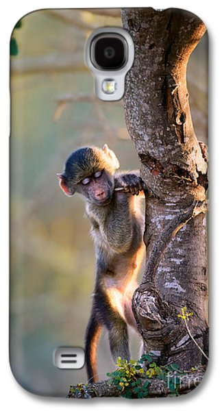 Small Photographs Galaxy S4 Cases - Baby Chacma climbing a tree Galaxy S4 Case by Johan Swanepoel