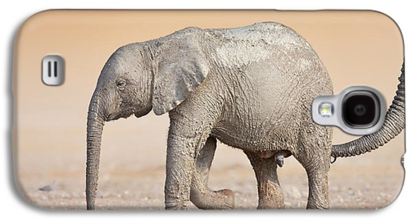 Small Photographs Galaxy S4 Cases - Baby elephant  Galaxy S4 Case by Johan Swanepoel