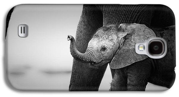 Small Galaxy S4 Cases - Baby Elephant next to Cow  Galaxy S4 Case by Johan Swanepoel