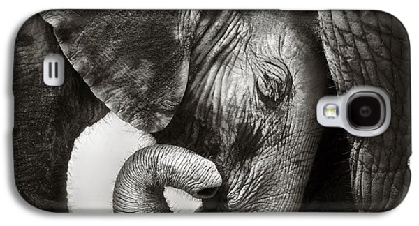 Close Galaxy S4 Cases - Baby elephant seeking comfort Galaxy S4 Case by Johan Swanepoel