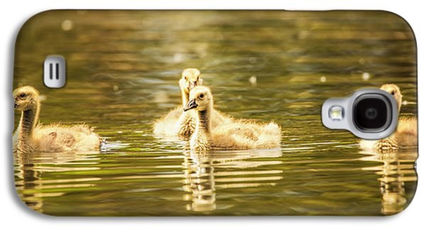 Geese Digital Art Galaxy S4 Cases - Baby Geese On The Water Galaxy S4 Case by Bill Tiepelman