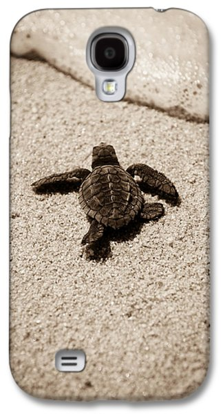 Baby Sea Turtle Galaxy S4 Case by Sebastian Musial