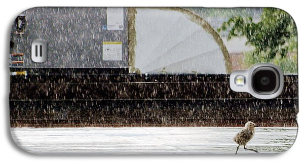 Abstract Landscape Photographs Galaxy S4 Cases - Baby Seagull Running in the rain Galaxy S4 Case by Bob Orsillo