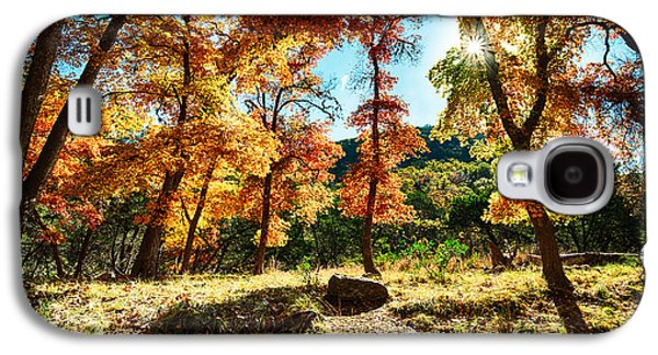 Aperture Photographs Galaxy S4 Cases - Backlit wonderland - Lost Maples State Natural Area Texas Hill Country Galaxy S4 Case by Silvio Ligutti