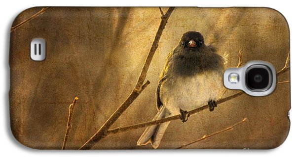 Backlit Birdie Being Buffeted  Galaxy S4 Case by Lois Bryan