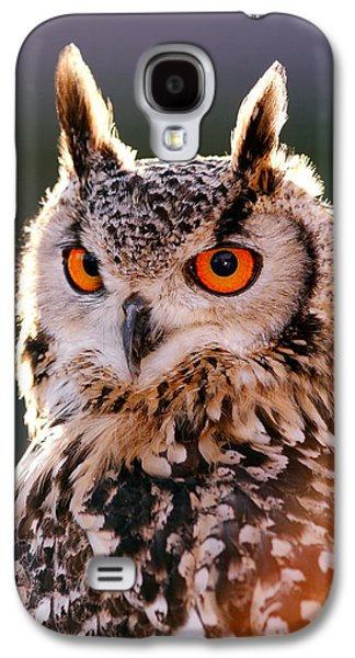 Frontal Galaxy S4 Cases - Backlit Eagle Owl Galaxy S4 Case by Roeselien Raimond