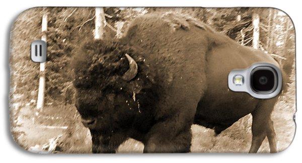 Bison Digital Art Galaxy S4 Cases - Bad Boy Galaxy S4 Case by Sylvia Thornton
