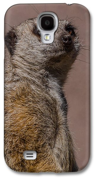 Bad Whisker Day Galaxy S4 Case by Ernie Echols