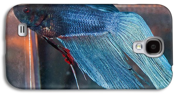 Betta Galaxy S4 Cases - Bait the Betta Galaxy S4 Case by Roger Reeves  and Terrie Heslop
