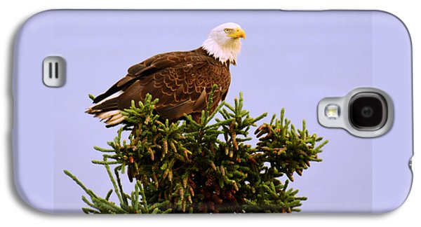 Americans Pyrography Galaxy S4 Cases - Bald Eagle Galaxy S4 Case by Debra  Miller