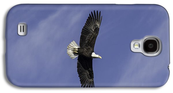 Fort Collins Galaxy S4 Cases - Bald Eagle Galaxy S4 Case by Trish Kusal