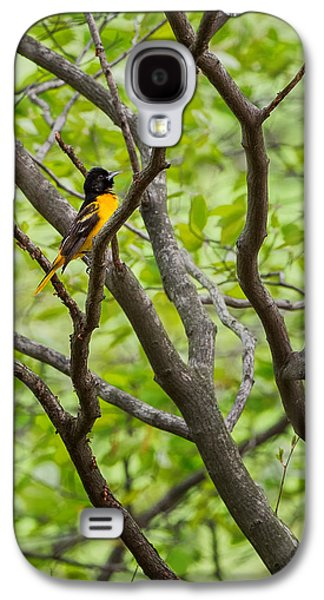 Baltimore Oriole Galaxy S4 Case by Bill Wakeley