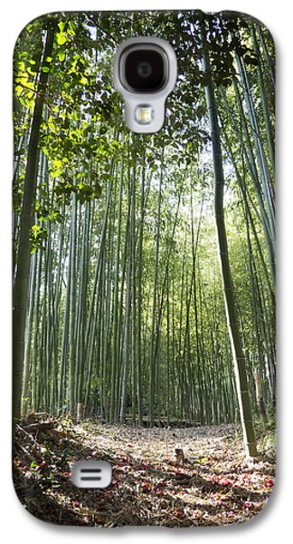 Bamboo Galaxy S4 Cases - Bamboo Forest Galaxy S4 Case by John Wong