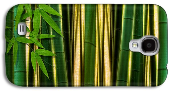 Bamboo Galaxy S4 Cases - Bamboo Forest- Bamboo Artwork Galaxy S4 Case by Lourry Legarde