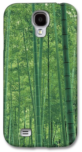 Forest Floor Galaxy S4 Cases - Bamboo Forest Nagaokakyo Kyoto Japan Galaxy S4 Case by Panoramic Images