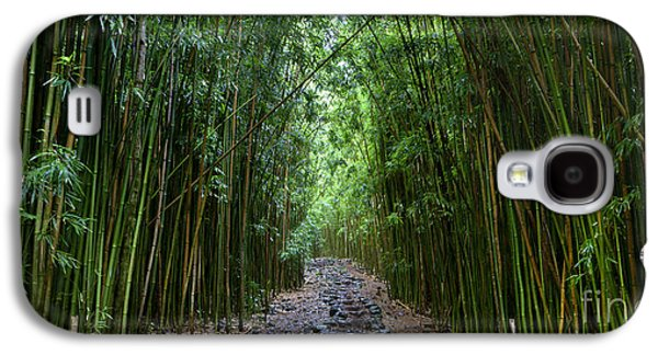 Bamboo Galaxy S4 Cases - Bamboo Forest Trail Hana Maui Galaxy S4 Case by Dustin K Ryan