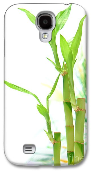 Bamboo Galaxy S4 Cases - Bamboo Stems and Leaves Galaxy S4 Case by Olivier Le Queinec
