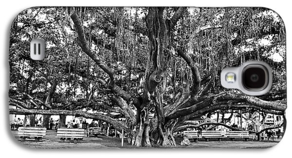 Root Galaxy S4 Cases - Banyan Tree Galaxy S4 Case by Scott Pellegrin