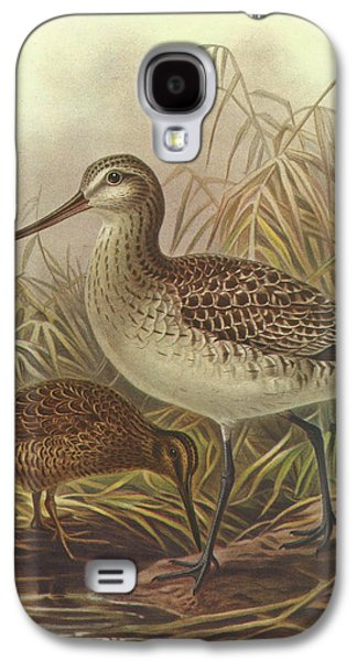 Chatham Paintings Galaxy S4 Cases - Bar Tailed Godwit and Chatham Island Snipe Galaxy S4 Case by J G Keulemans
