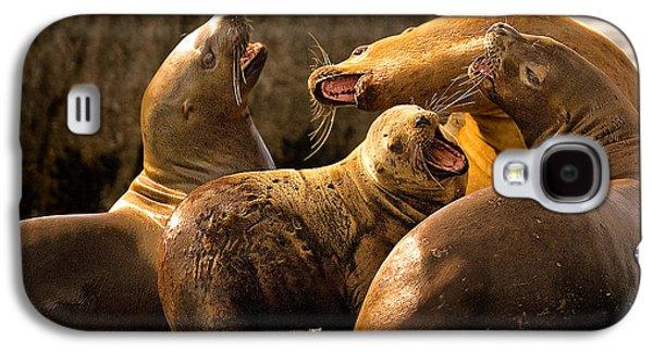 Ocean Mammals Galaxy S4 Cases - Bark Bark Galaxy S4 Case by Rick Barnard