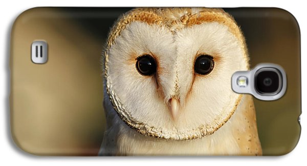 Frontal Galaxy S4 Cases - Barn Owl Beauty Galaxy S4 Case by Roeselien Raimond
