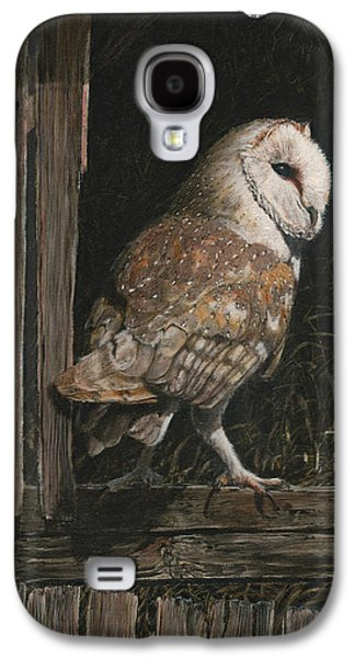 Hay Paintings Galaxy S4 Cases - Barn Owl in the Old Barn Galaxy S4 Case by Rob Dreyer AFC