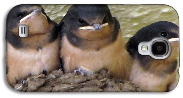 Swallow Chicks Galaxy S4 Cases - Barn Swallows 1 Galaxy S4 Case by Roger Reeves  and Terrie Heslop