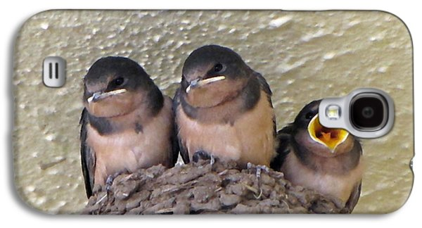 Mud Nest Galaxy S4 Cases - Barn Swallows 2 Galaxy S4 Case by Roger Reeves  and Terrie Heslop