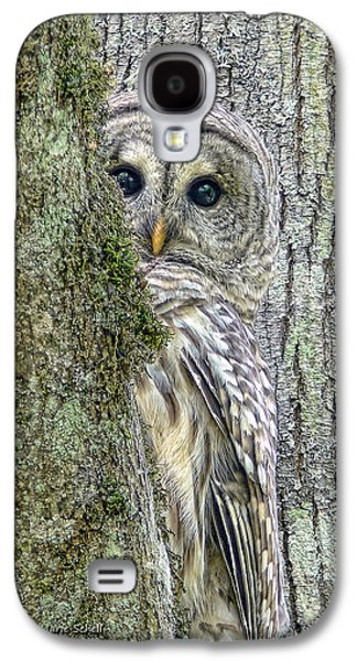 Nature Photographs Galaxy S4 Cases - Barred Owl Peek a Boo Galaxy S4 Case by Jennie Marie Schell