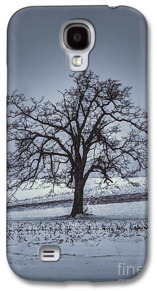 Dan Friend Galaxy S4 Cases - Barren Winter Scene With Tree Galaxy S4 Case by Dan Friend