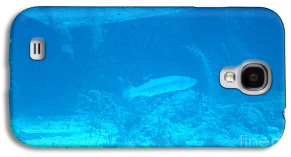 Water Grouper Print Galaxy S4 Cases - Barricuda Galaxy S4 Case by John Malone