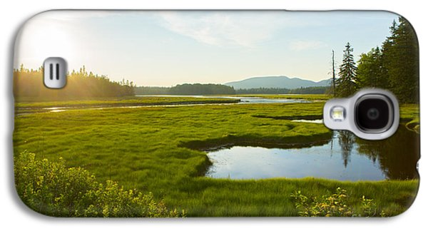 Maine Mountains Galaxy S4 Cases - Bass Harbor Marsh at Dusk Galaxy S4 Case by Diane Diederich