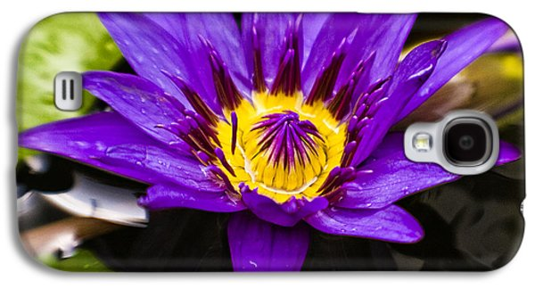 Pellegrin Photographs Galaxy S4 Cases - Bayou Beauty Galaxy S4 Case by Scott Pellegrin