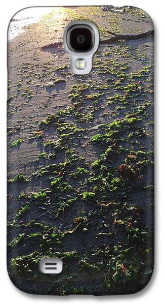 Alga Pyrography Galaxy S4 Cases - Beach texture Galaxy S4 Case by Mark Schuster