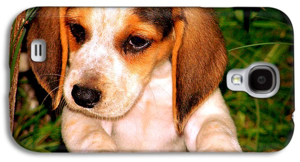 Canine Greeting Cards Digital Galaxy S4 Cases - Beagle Puppy 1 Galaxy S4 Case by Lynn Griffin