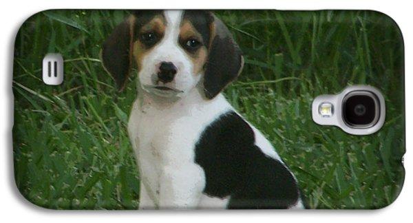 Canine Greeting Cards Digital Galaxy S4 Cases - Beagle Puppy 4 Galaxy S4 Case by Lynn Griffin